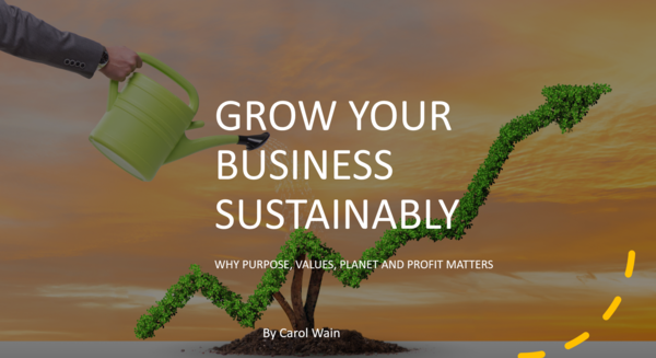 Grow Your Business Sustainably